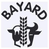 MAISON BAYARD